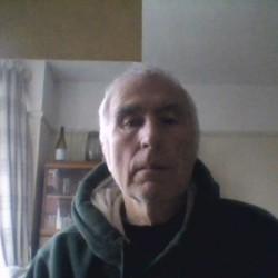 Dave (71)